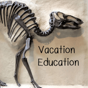 Learning while on Vacation: Our Vacation Education