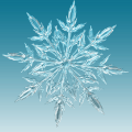 Snowflakes are amazing! These cool videos get up close and personal with the details behind these beautiful creations of nature.