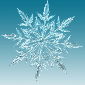 Amazing Videos About Snowflakes