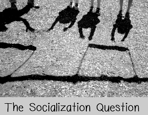 socialization question