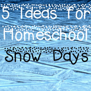 Ideas for Homeschool Snow Days + Guest Post at Blessed Beyond a Doubt