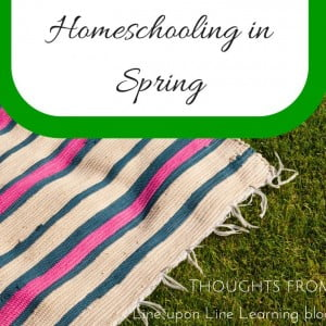Thinking Outside of the Box: Homeschooling in Spring