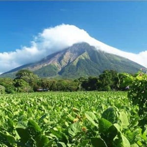 A Virtual Trip to Nicaragua