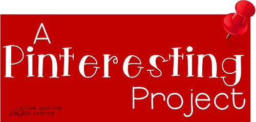 pinteresting project logo