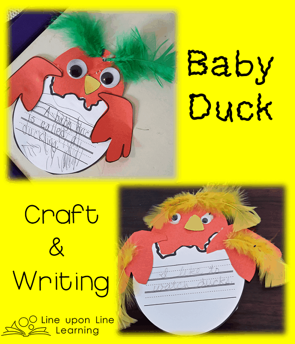 duck craft 2