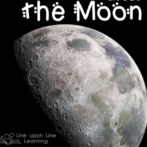 Top 10 Moon Picture Books and Educational Activities