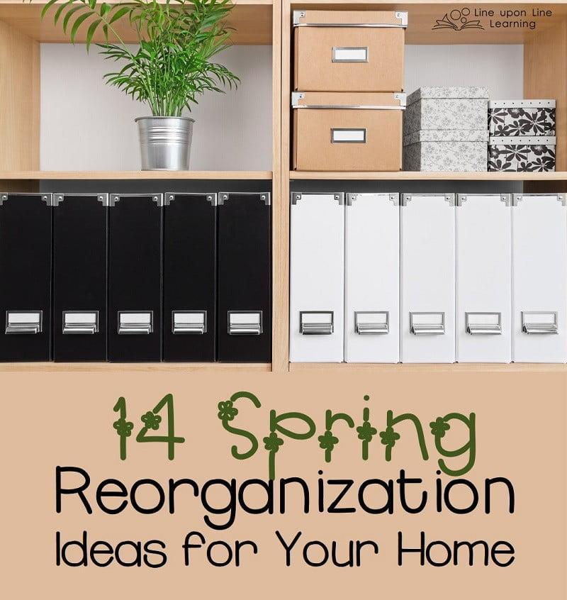 14 Spring Reorganization Ideas