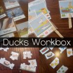 201504ducks workbox