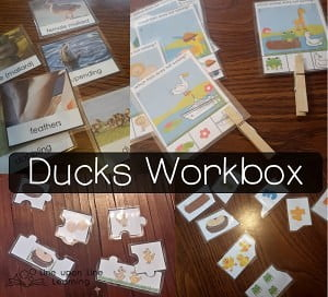 Ducks Workbox {Workbox Wednesday}