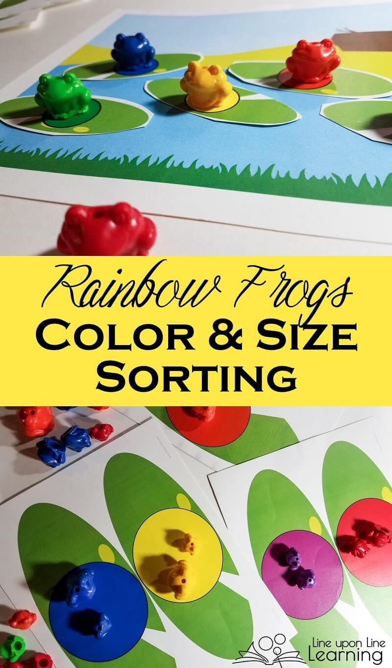 Practice sorting by color with rainbow counters for a hands-on mathematical thinking activity for preschool. Bear counters and frog counters free printable is included!