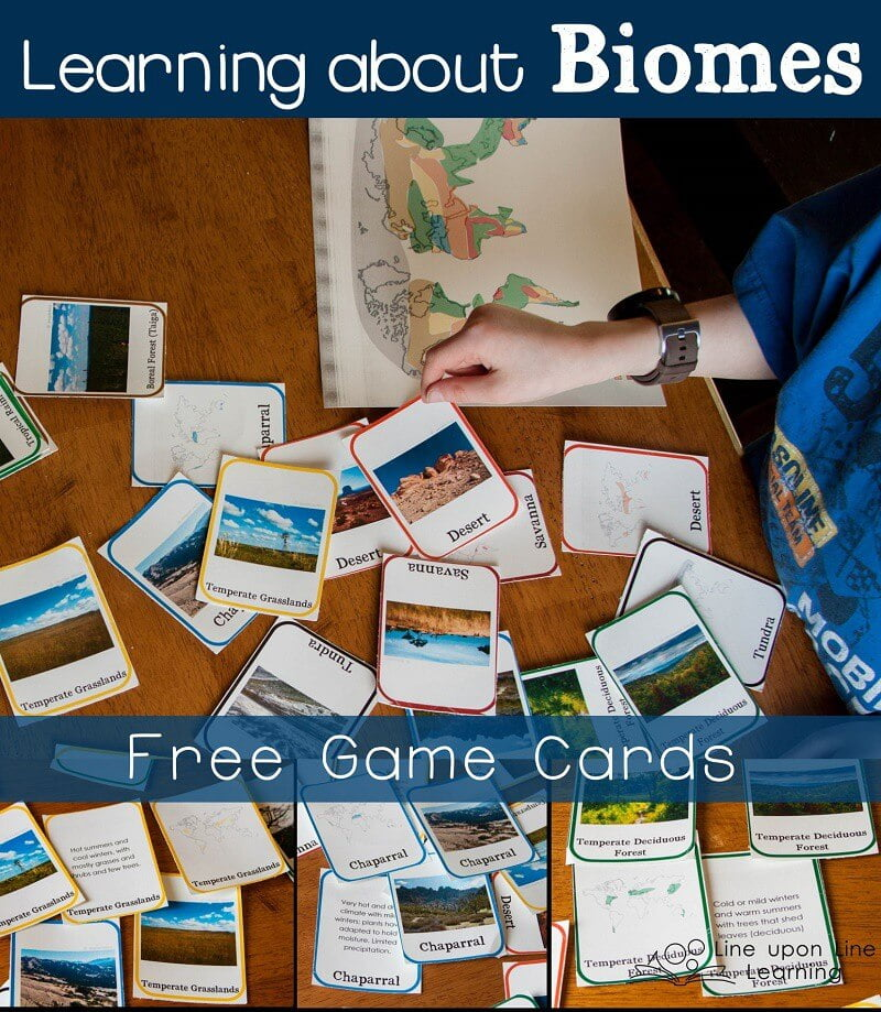 Learning about biomes game cards line upon line learning review with these free biomes game cards sciox Gallery