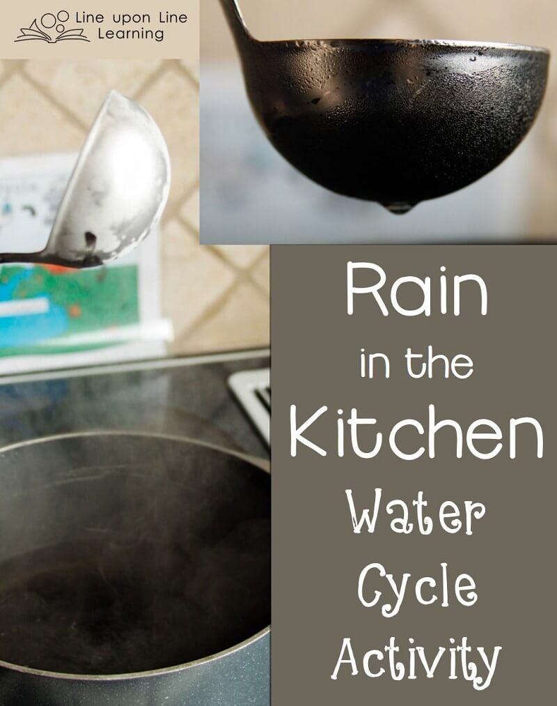 "We made it ""rain"" in the kitchen with a simple water cycle activity."