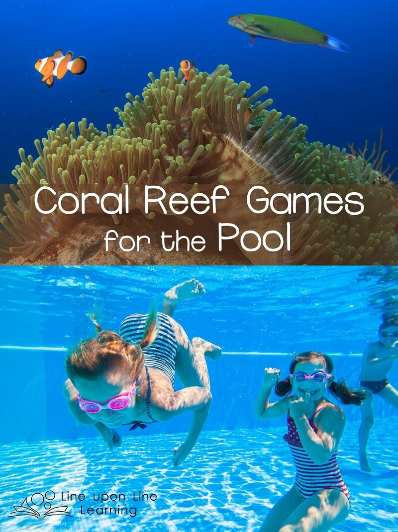 After learning about the coral reef, we love to take our play to the pool for swimming coral reef games!