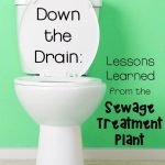 Down the Drain: A Visit to the Sewage Treatment Plant