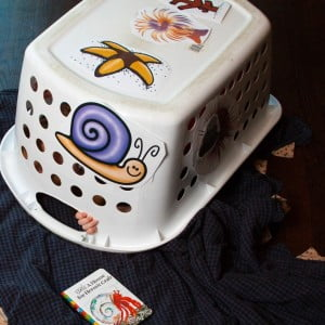 Our Favorite Hermit Crab Preschool Imagination Game