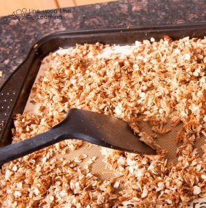 Simple and Delicious Kid-Friendly Granola