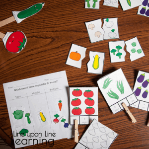Vegetables Learning Activities