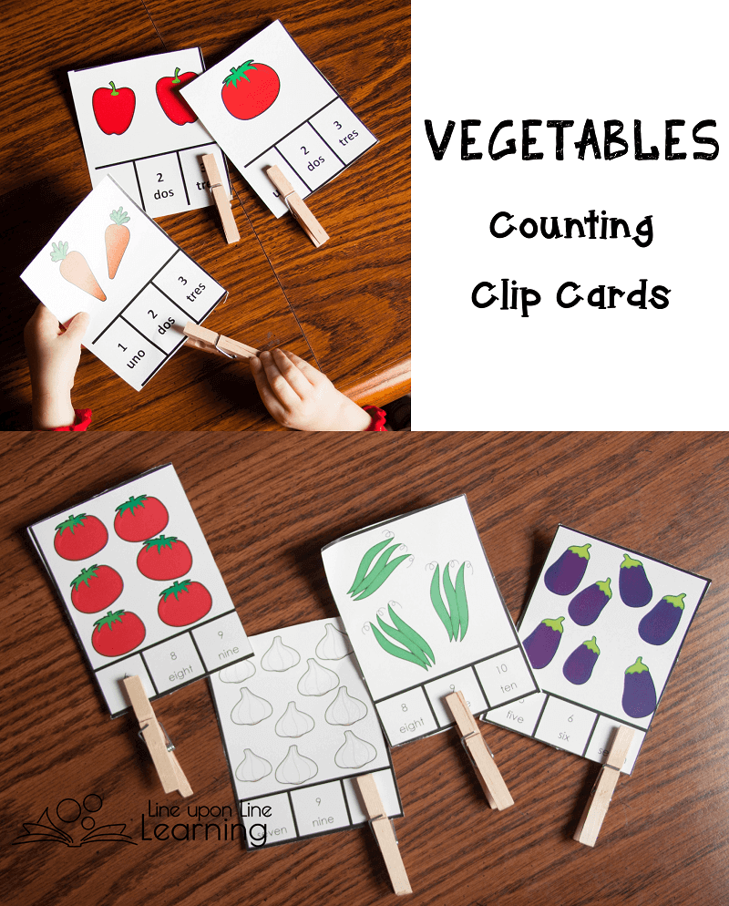Count the vegetables and clip the correct number at the bottom. Differentiated. My preschooler is shy about numbers above 5, but maybe she'll be ready for them soon..