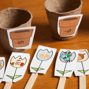 Flower-Themed Word Family Picture Sort
