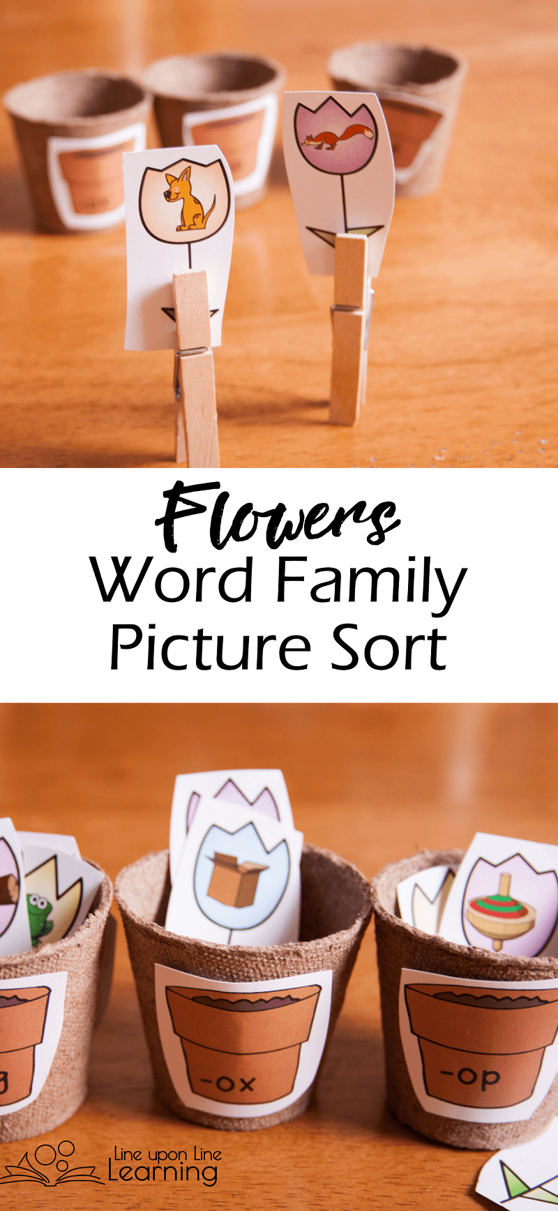 We used mini-flower pots to sort the image-flowers into the correct word family in this word family picture sort just perfect for spring!
