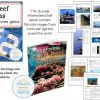 Coral Reef DEMO Slide1