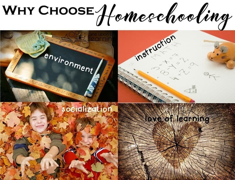 I choose homeschooling for the environment, instruction, love, and socialization.