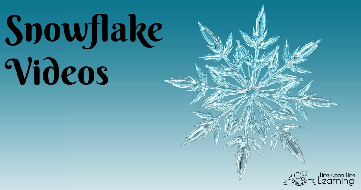 Learn more about Snowflake Bentley and learn about how snowflakes form with these cool snowflake videos.