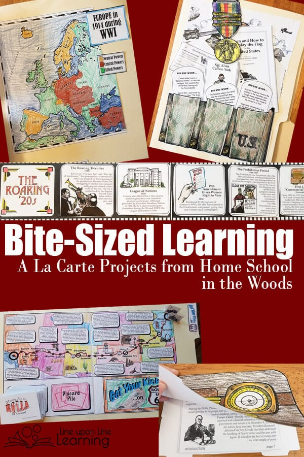 The A La Carte Store gives me a choice of lap books, notebooking projects, timelines, and file folder games for American history, world history and more. I am so excited to have discovered this resource.