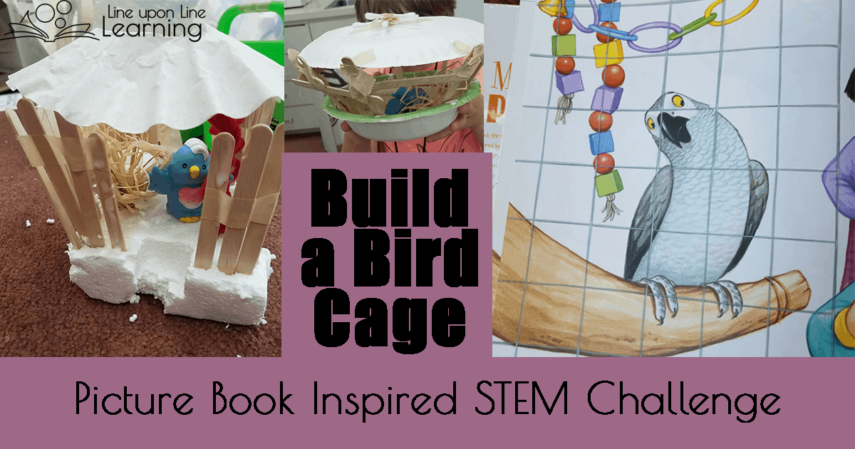 Buildling a bird cage helped us practice designing and engineering a creation. Fun picture book inspired lesson!