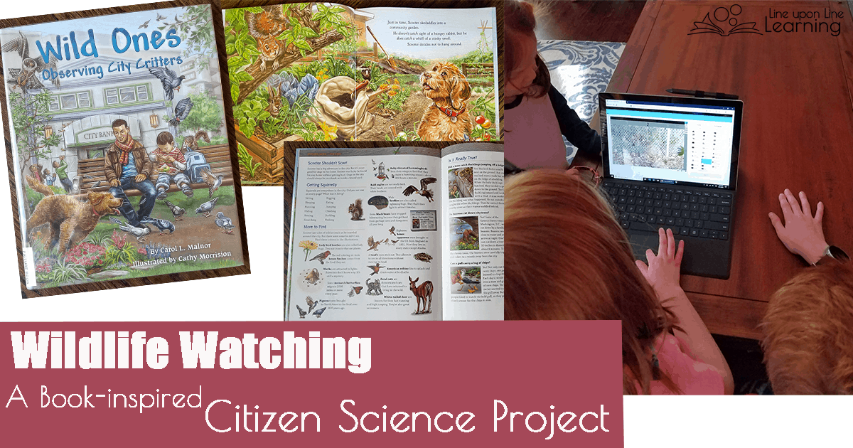 "As we read a picture book about animals in the city and found a way to help scientists through a citizen science project, we have learned more about how animals interact in our city as well as which ones are most common. Joining in an actual research project as a ""citizen scientist"" has made science feel more pertinent on a daily basis."